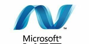 .NET Framework 4.5.2 indir